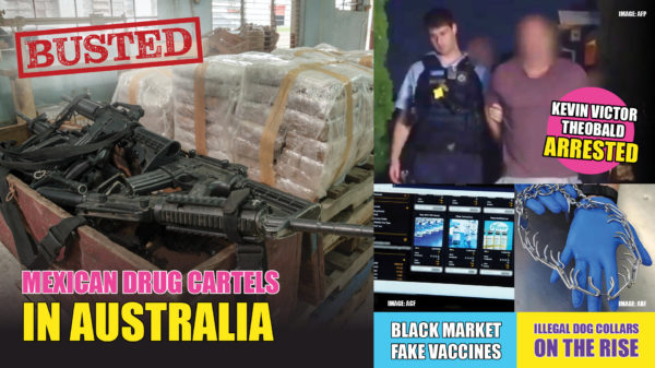 BUSTED has some big, juicy, black market import stories for this week with Rohan and Heath taking you on what goes on behind the news. Mexican drug cartels are bombarding Australian borders with illegal drugs.